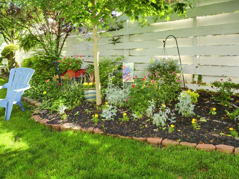 AO - Small garden area